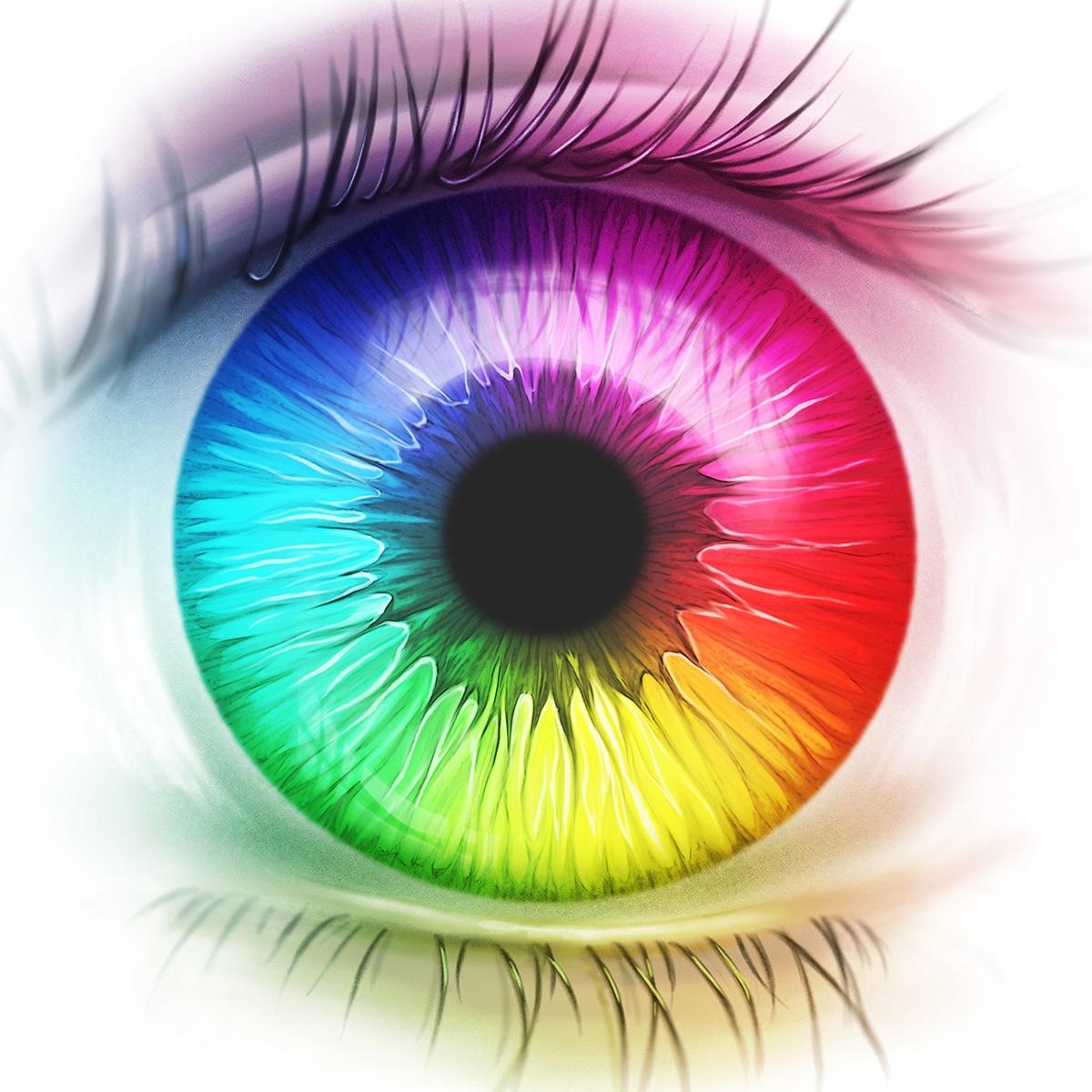 Feel Colors